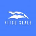 Fitso Seals Swimming Classes