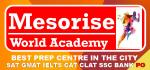 Mesorise World Academy Gurgaon