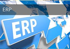 ERP Training Program