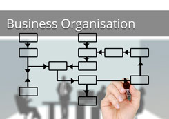Business Organisation Learning Sessions