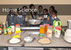 For Standard 11-12 Home Science Tuition