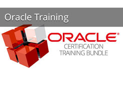 Oracle Learning Guidance