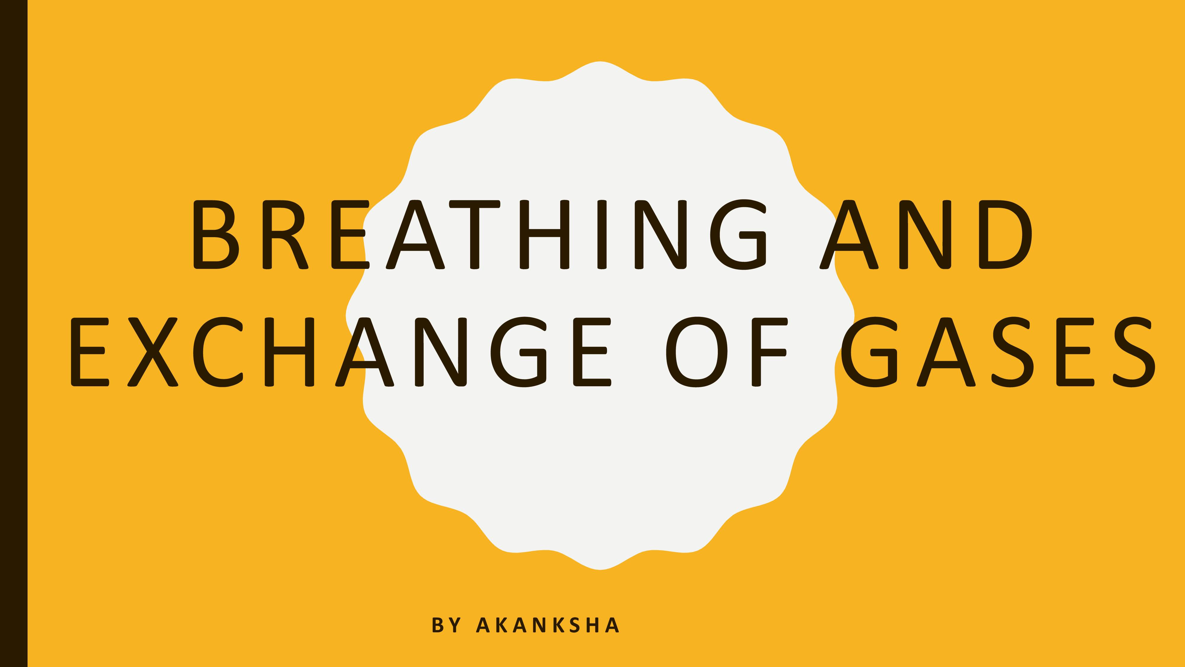 Breathing and exchange of gases -3