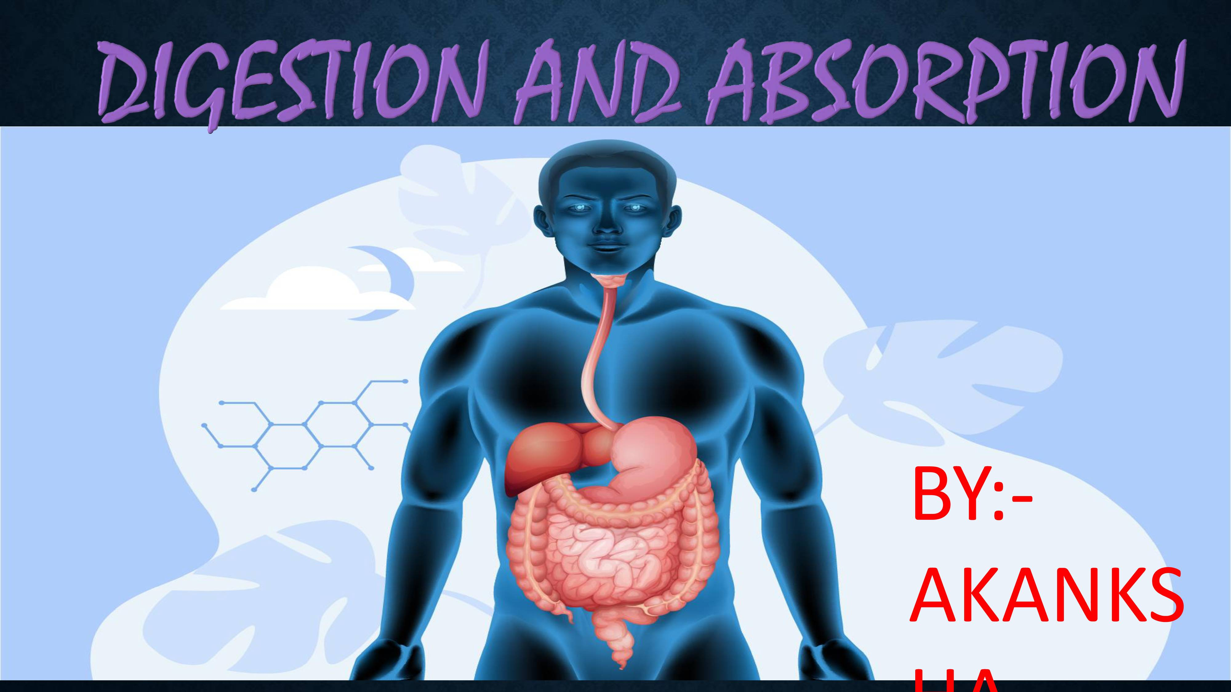 Digestion and absorption - 1